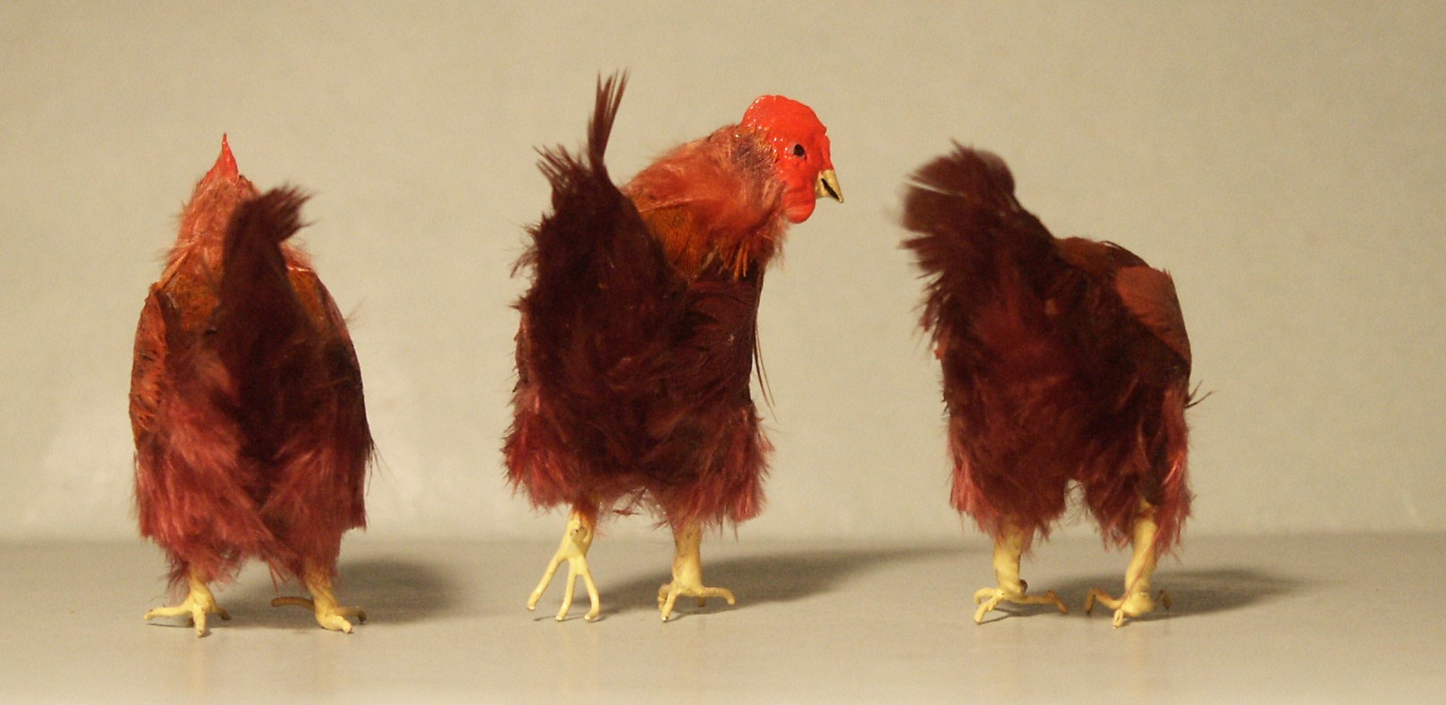 Feathered hens for the dolls house