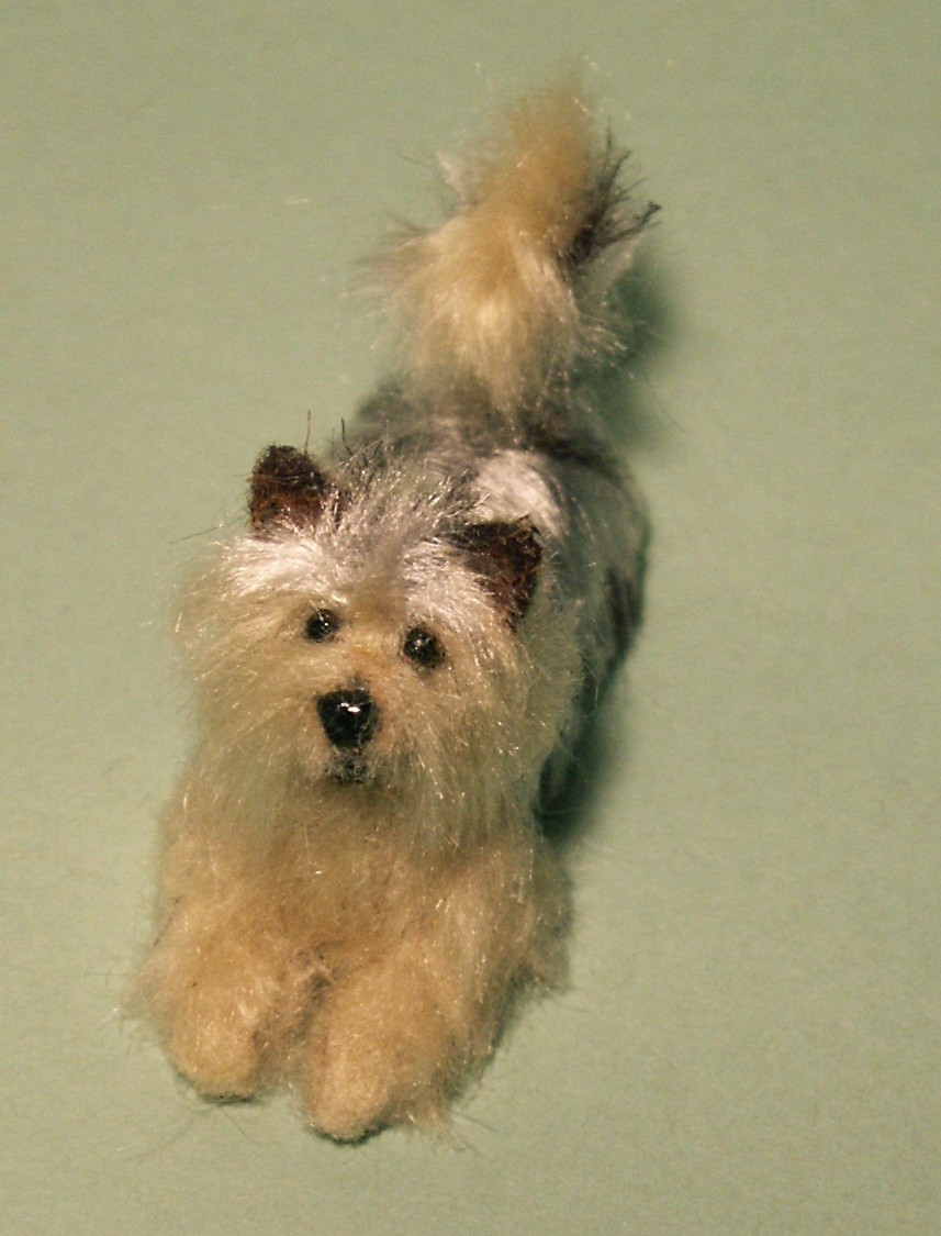 Yorkie for the dolls house