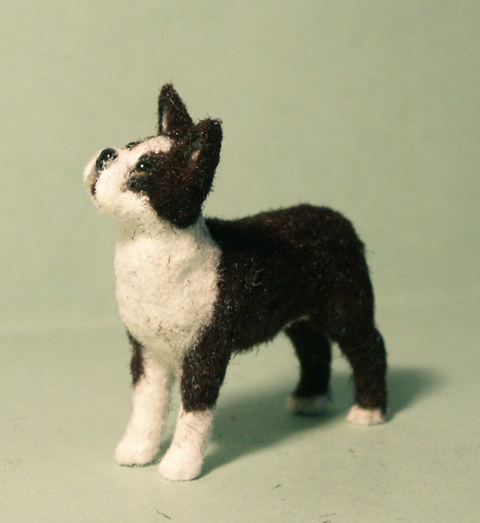Boston Terrier dog for the dolls house