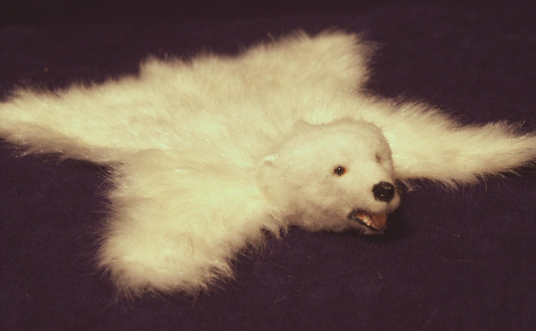 Polar Bear Skin Rug Home Decor